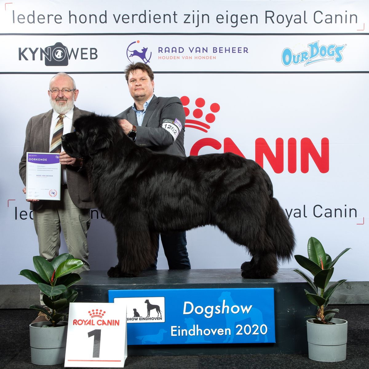GROUP_2_1_COPYRIGHTFREE_DOGSHOW_EINDHOVEN_2020_KYNOWEB_KY3_2826_20200209_16_37_13